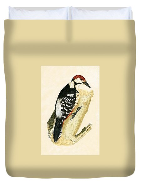 White Rumped Woodpecker Duvet Cover by English School
