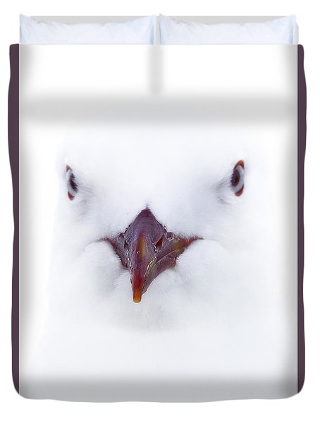 Duvet Cover featuring the photograph White Seagull 01 by Kevin Chippindall