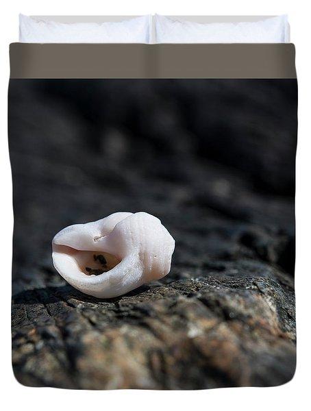White Shell Duvet Cover