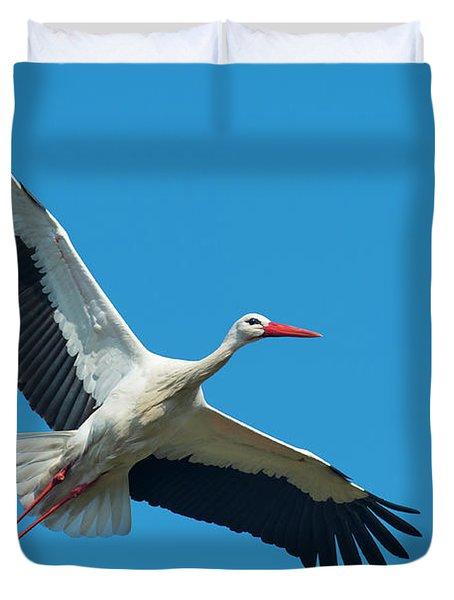 White Stork In Flight Duvet Cover