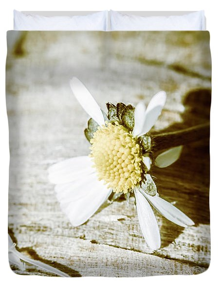 White Summer Daisy Denuded Of Its Petals Duvet Cover