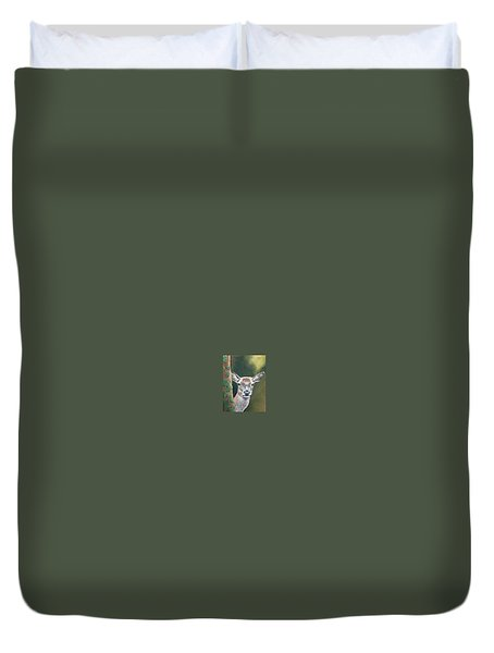 White Tail Doe At Ancon Hill Duvet Cover
