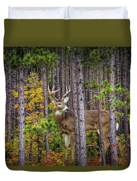 White Tailed Buck Among The Pines Duvet Cover