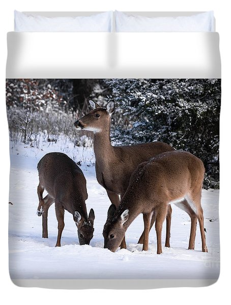 White-tailed Deer - 8855 Duvet Cover