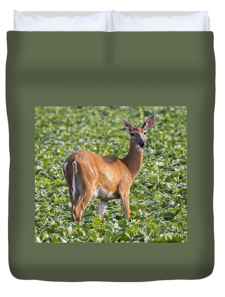 Duvet Cover featuring the photograph White-tailed Deer by Ricky L Jones