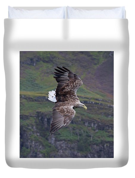 White-tailed Eagle Banks Duvet Cover