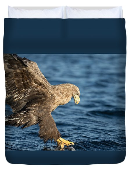 White-tailed Eagle Hunting Duvet Cover