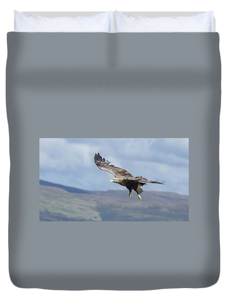 White-tailed Eagle On Mull Duvet Cover