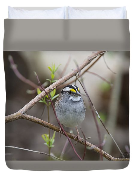 White Throat Duvet Cover