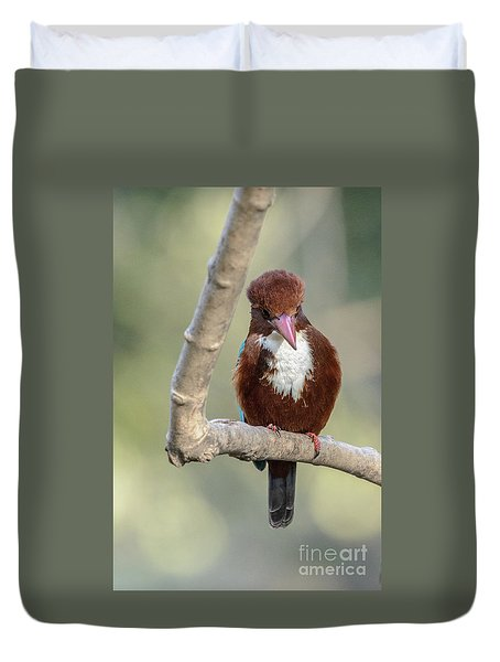 White-throated Kingfisher 01 Duvet Cover