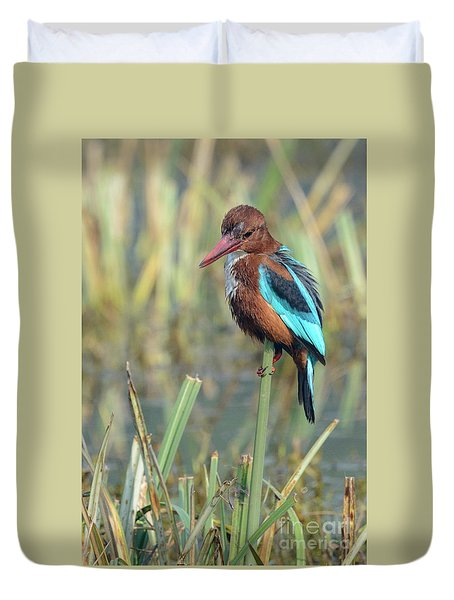 White-throated Kingfisher 13 Duvet Cover