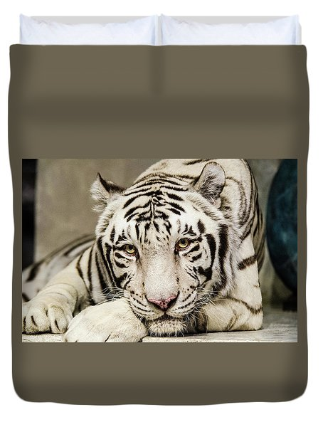 White Tiger Looking At You Duvet Cover
