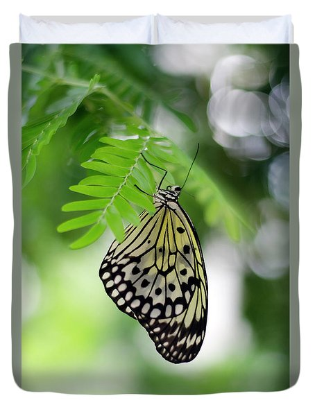 White Tree Nymph Butterfly 2 Duvet Cover by Marie Hicks