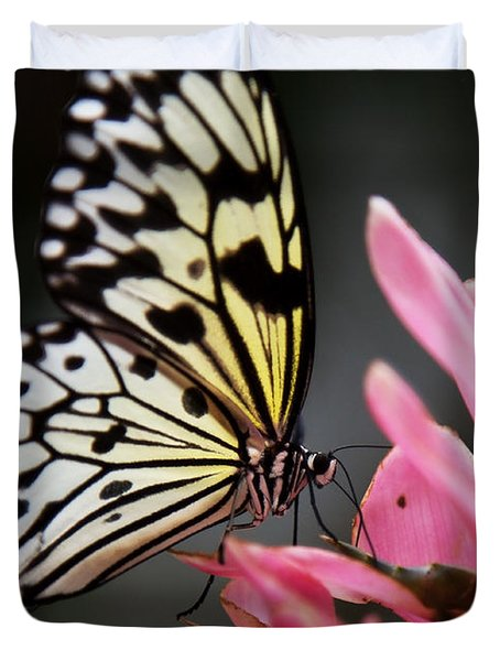 Duvet Cover featuring the photograph White Tree Nymph by Sue Harper
