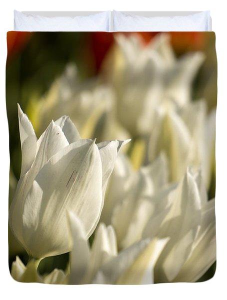White Triumphator Duvet Cover