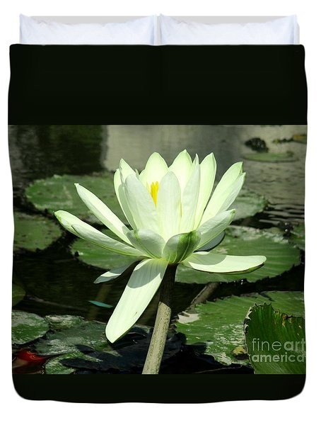 Duvet Cover featuring the photograph White Water Lily 1 by Randall Weidner