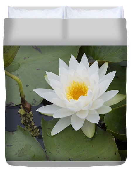 White Waterlily Duvet Cover by Linda Geiger