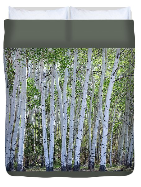 White Wilderness Duvet Cover by James BO Insogna