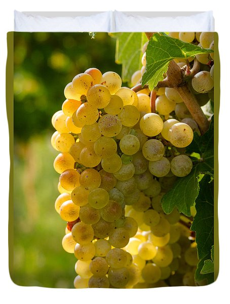 White Wine Grapes Duvet Cover
