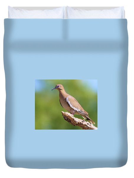 Duvet Cover featuring the photograph White-winged Dove by Myrna Bradshaw