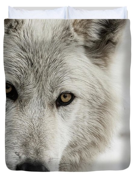 White Wolf II Duvet Cover