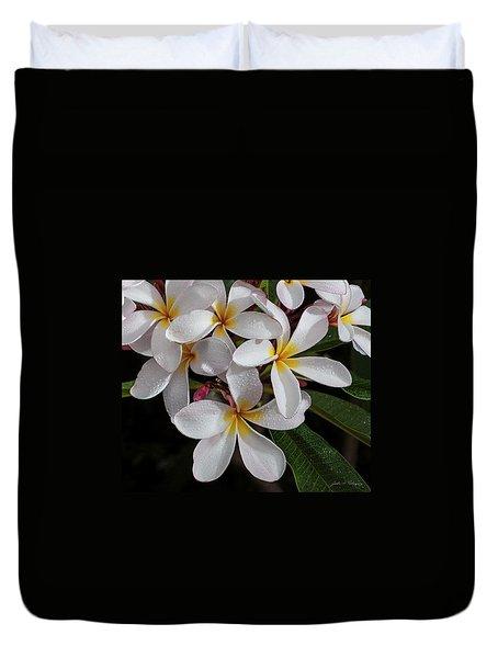White/yellow Plumerias In Bloom Duvet Cover