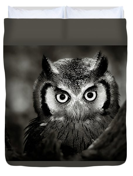 Whitefaced Owl Duvet Cover
