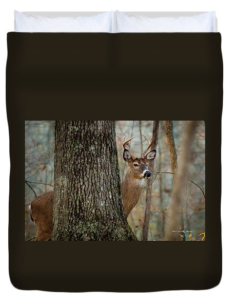 Whitetail #31 Duvet Cover