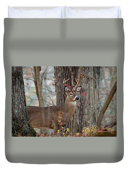 Whitetail #60 Duvet Cover