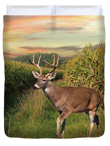 White-tailed Buck In Cornfield Duvet Cover