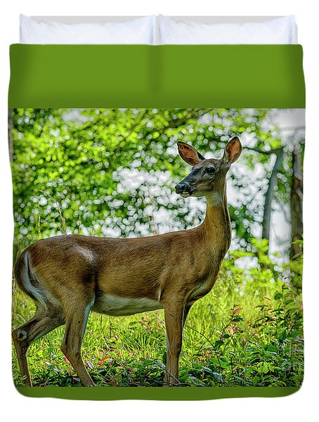 Duvet Cover featuring the photograph Whitetail Deer  by Thomas R Fletcher