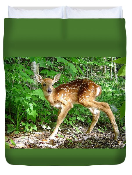 Whitetail Fawn Duvet Cover