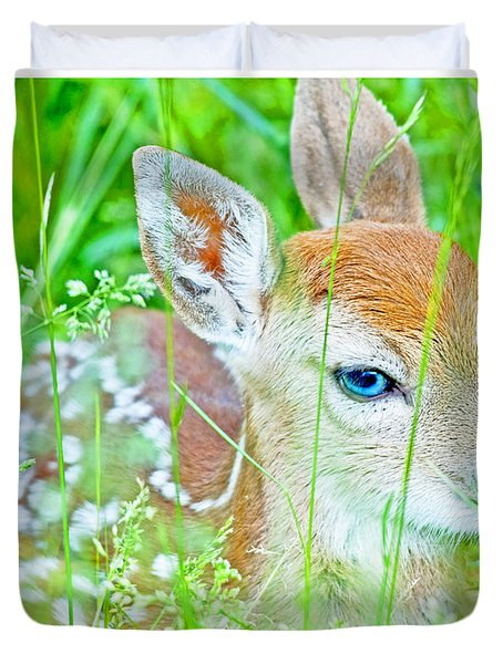 Whitetailed Deer Fawn Duvet Cover