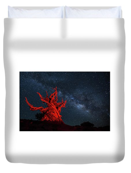 Wicked Duvet Cover by Tassanee Angiolillo