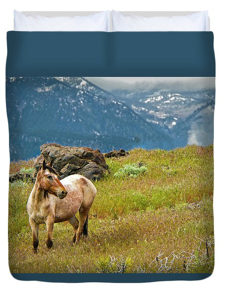 Wild Appaloosa Horse Duvet Cover