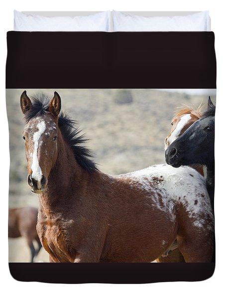 Wild Appaloosa Mustang Horse Duvet Cover
