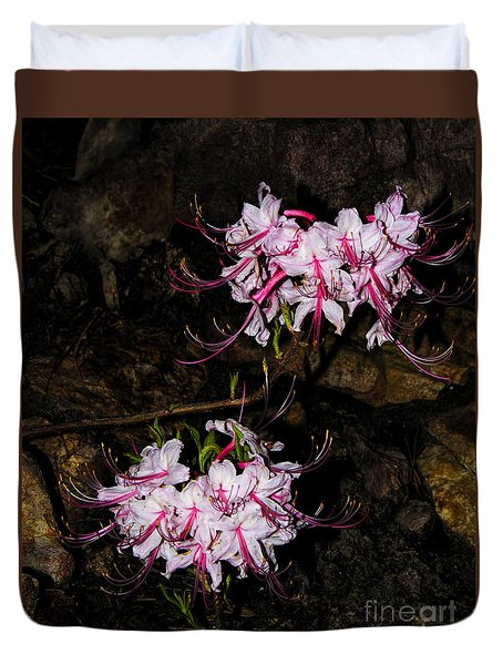 Duvet Cover featuring the photograph Wild Azalea Duo by Barbara Bowen
