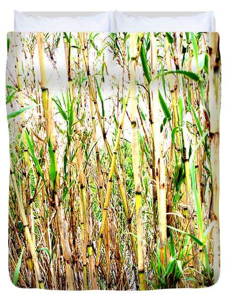 Wild Bamboo Duvet Cover