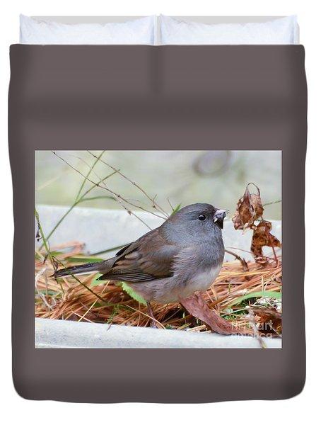 Duvet Cover featuring the photograph Wild Birds - Dark-eyed Junco by Kerri Farley