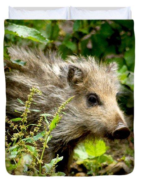 Wild Boar Baby Duvet Cover