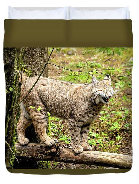 Wild Bobcat In Mountain Setting Duvet Cover