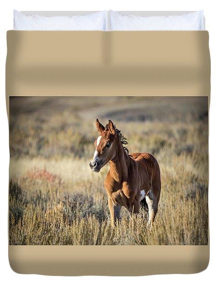 Wild Colt In Sand Wash Basin - Northwest Colorado Duvet Cover