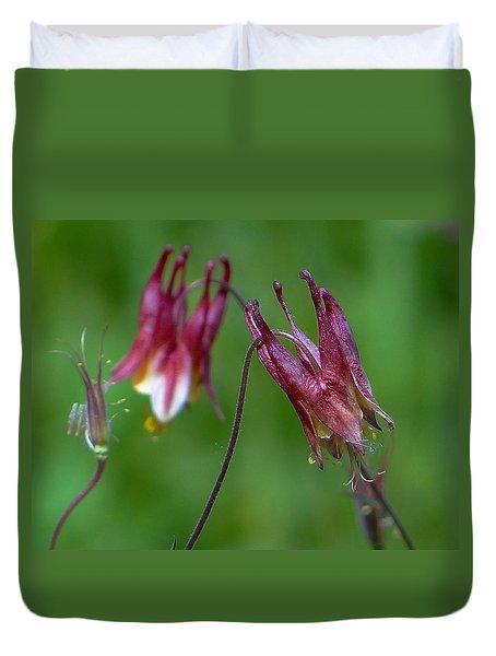 Duvet Cover featuring the photograph Wild Columbine - Aquilegia Canadensis by Blair Wainman