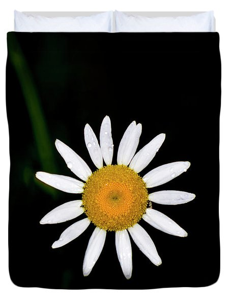 Duvet Cover featuring the digital art Wild Daisy by Chris Flees