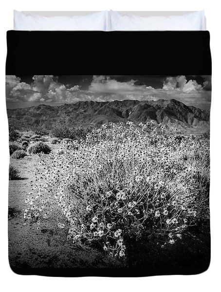 Duvet Cover featuring the photograph Wild Desert Flowers Blooming In Black And White In The Anza-borrego Desert State Park by Randall Nyhof