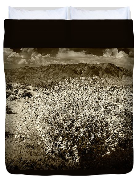 Duvet Cover featuring the photograph Wild Desert Flowers Blooming In Sepia Tone  by Randall Nyhof