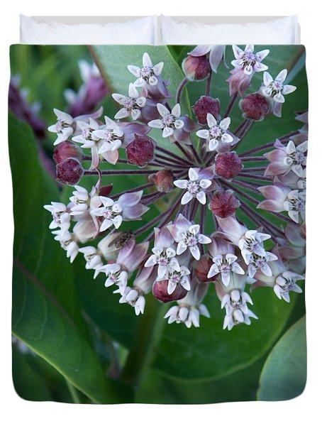 Wild Flower Star Burst Duvet Cover