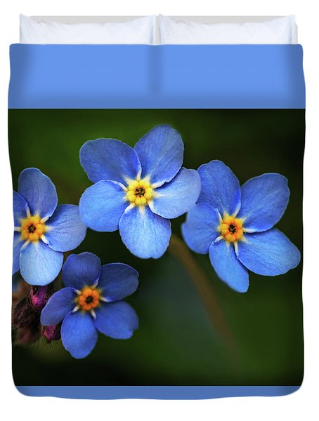 Wild Flower Forget-me-not Since The Middle Ages Symbolizes The Celestial Eye And Reminds You Of God Duvet Cover