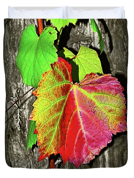Duvet Cover featuring the photograph Wild Grape Vine II By Kaye Menner by Kaye Menner