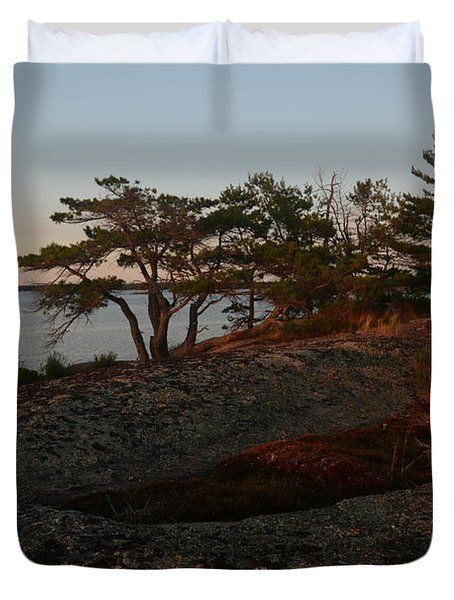Wild Grass At Sunset - Georgian Bay Duvet Cover